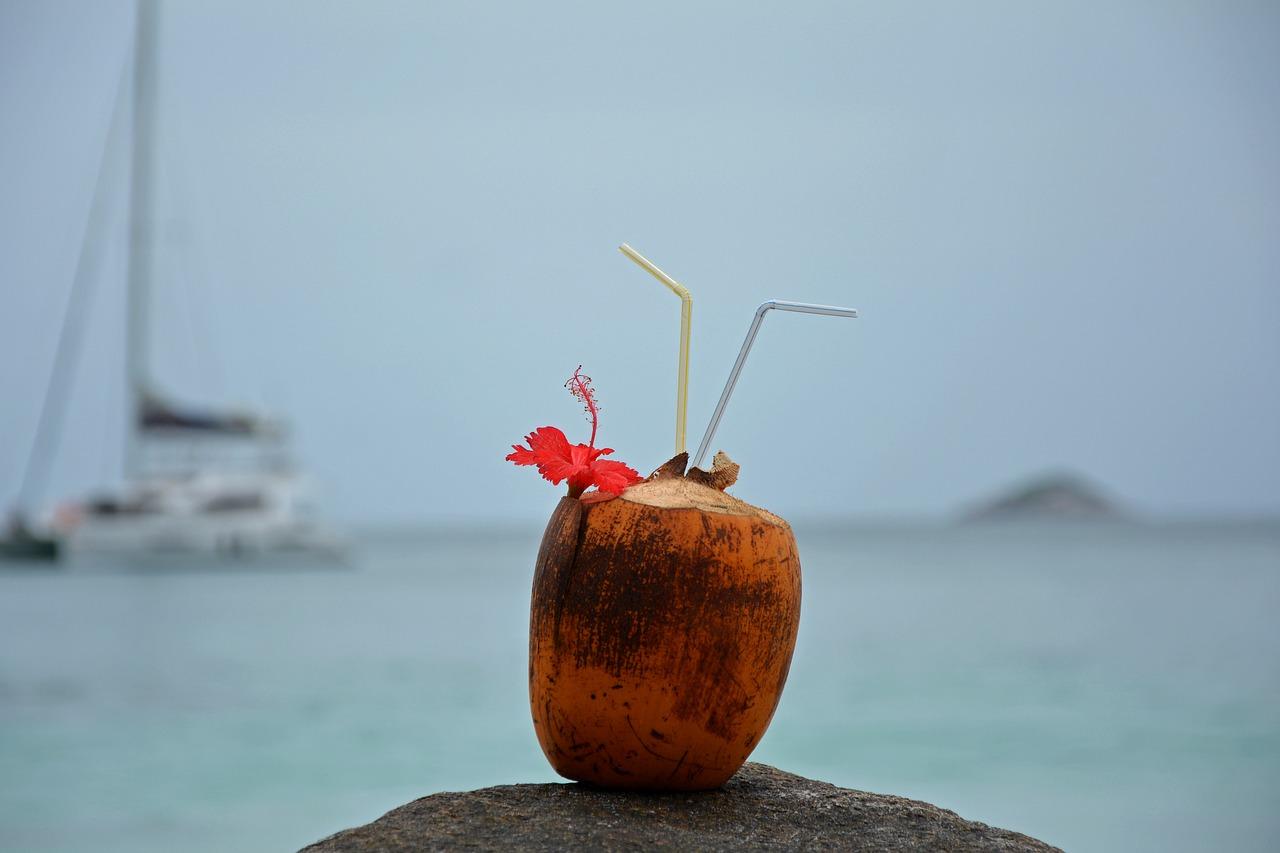 pití kokosové vody